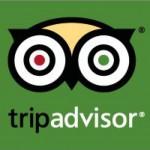 TripAdvisor-Icon-728x735