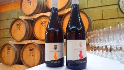 Botti e Bottiglie di vino Tenuta Bosco de' Medici