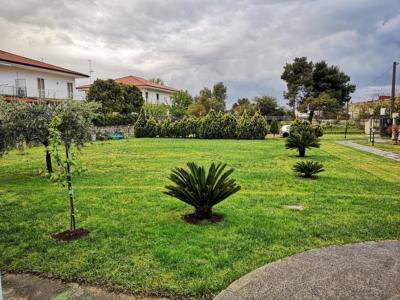 Visuale sul giardino BeB Villa Maredona